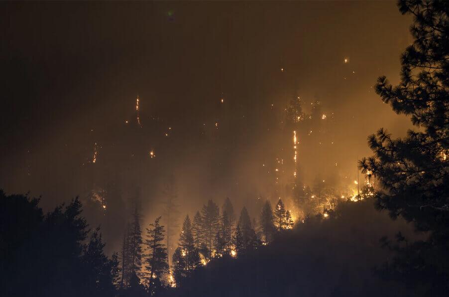 Как считают ущерб от пожаров в Сибири