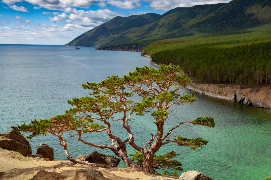 Озеро проблем: что убивает Байкал